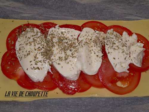 Rectangle de tomates/mozzarelle - Quand Choupette et Papoune cuisinent